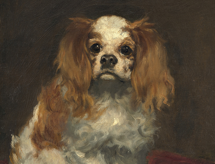 Painting of A King Charles Spaniel