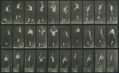 Caption: Eadweard Muybridge, Ascending and descending stairs, Plate No. 504, 1887, collotype, National Gallery of Art, Washington, Corcoran Collection (Museum purchase, 1887)