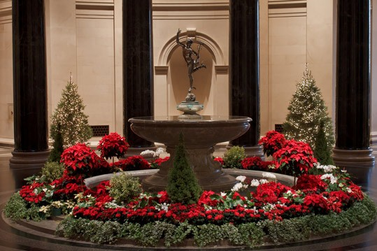 View of the West Building Rotunda decorated with poinsettia plants and holiday greenery. Photograph by Charles Bauduy © National Gallery of Art, Washington