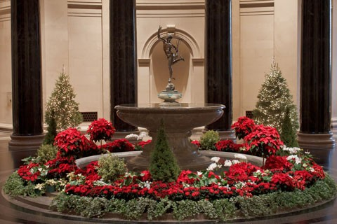 View of the West Building Rotunda decorated with poinsettia plants and holiday greenery.