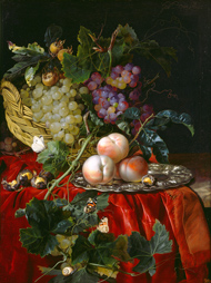 Willem van Aelst Still Life with Fruit, Nuts, Butterflies, and Other Insects on a Ledge, c. 1677 oil on canvas Candy and Greg Fazakerley